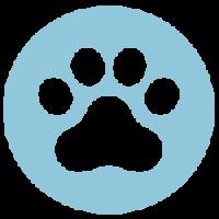 iPerro. Calcula el seguro de tu mascota