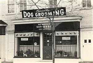 La última tendencia en cortes de pelo para perros