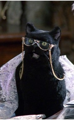 10 gatos mas famosos television puesto 3